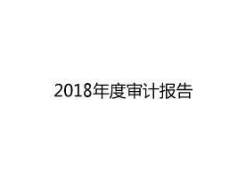 2018年度审计报告