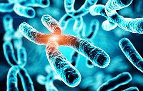 地中海貧血基因檢測