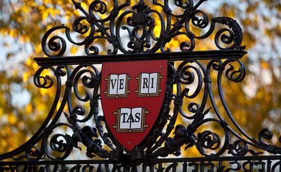 """喜事连连!被哈佛大学录取、托福首考117分......接住讯得达这波新年""""猪""""福"""
