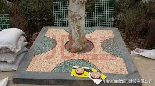 漯河市滨河广场树围