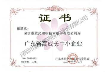 广东省高成长中小企业证书