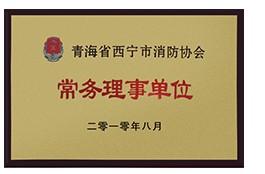 青海省西宁市雷电竞官方网站协会常务理事单位