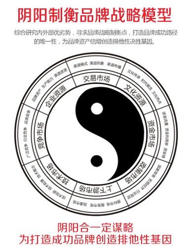 阴阳制衡品牌战略模型