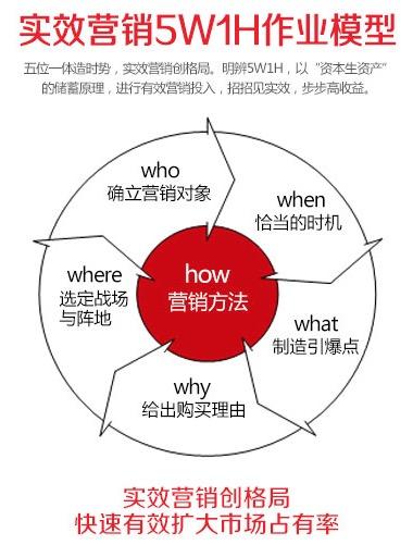 实效营销5W1H作业模型