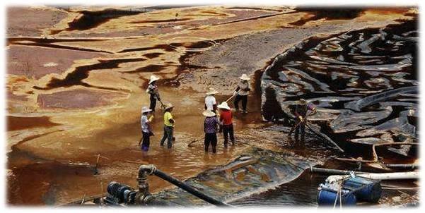 成功案例-矿业工程-紫金矿业v1.1