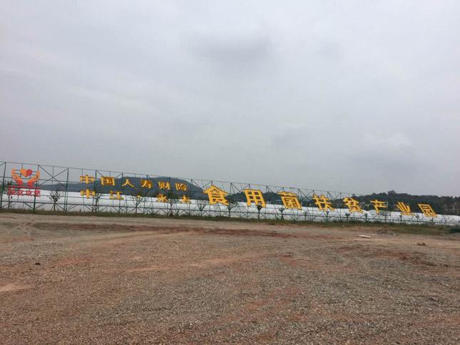中江农业产业园液晶拼接大屏项目