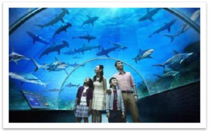 日照海洋公园·虚拟海洋馆