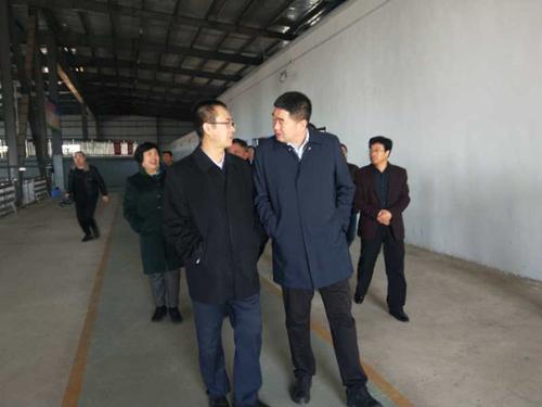 工信委荆玉林副厅长视察奥福污水处理厂