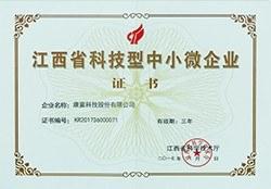 江西省科技型中小微企业证书