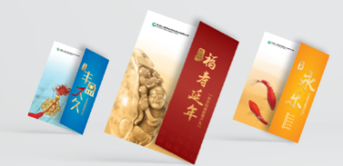 中国人寿养老险整体品牌传播产品形象广告系列