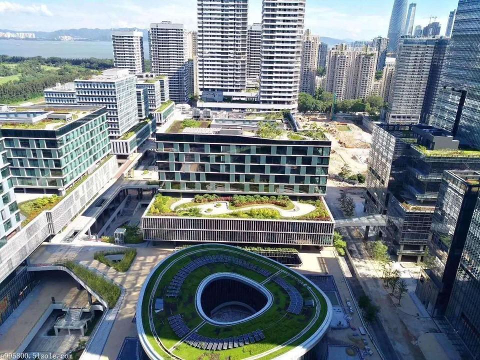 深圳——南山区深圳湾科技生态园基地