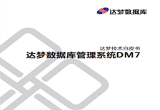 数据库管理系统 DM7