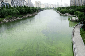 流域污染达标规划