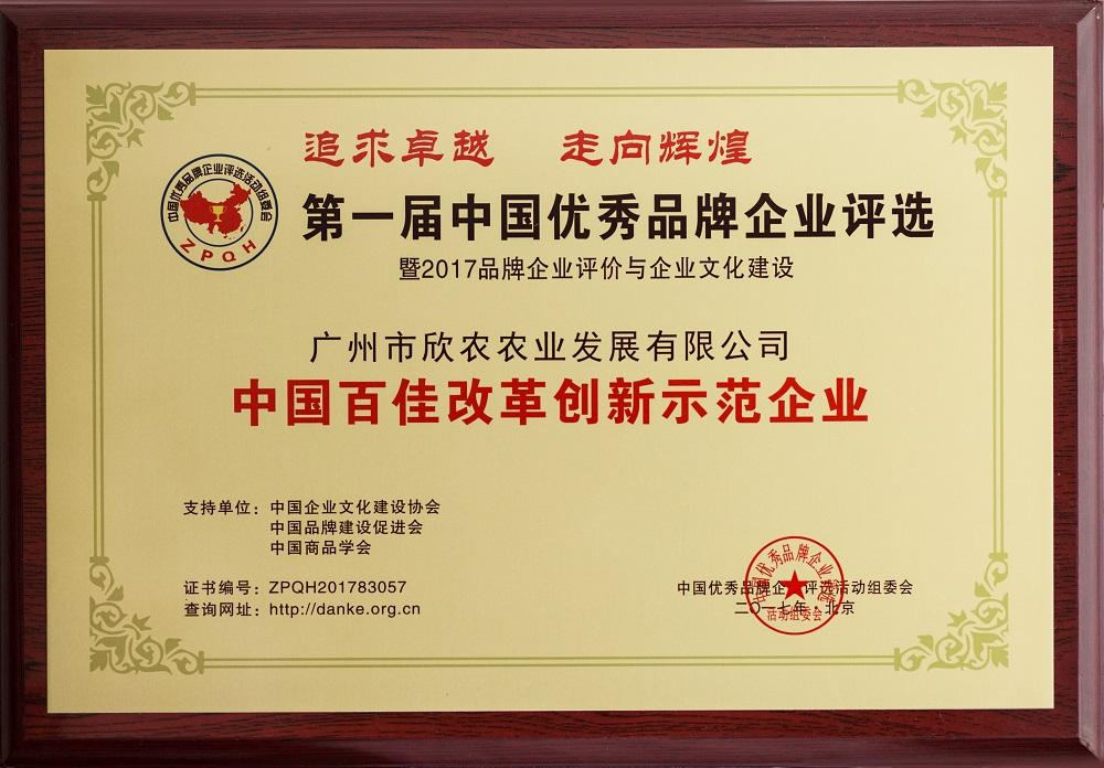 中国百佳改革创新示范企业