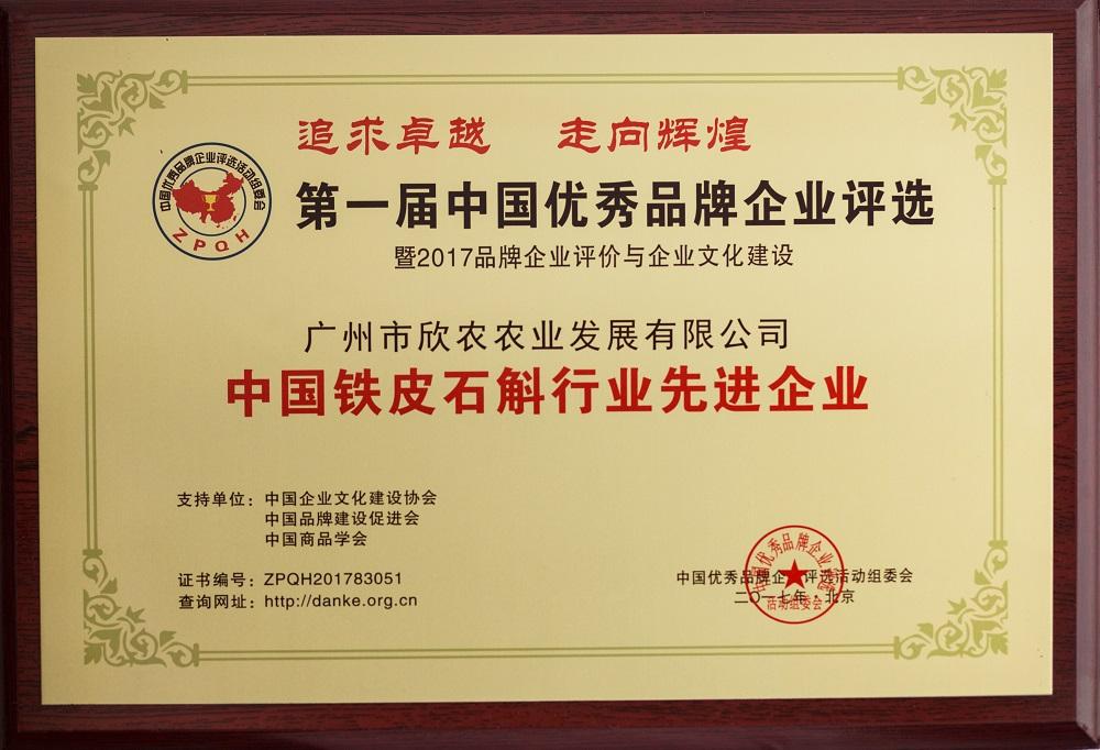 中国铁皮石斛行业先进企业
