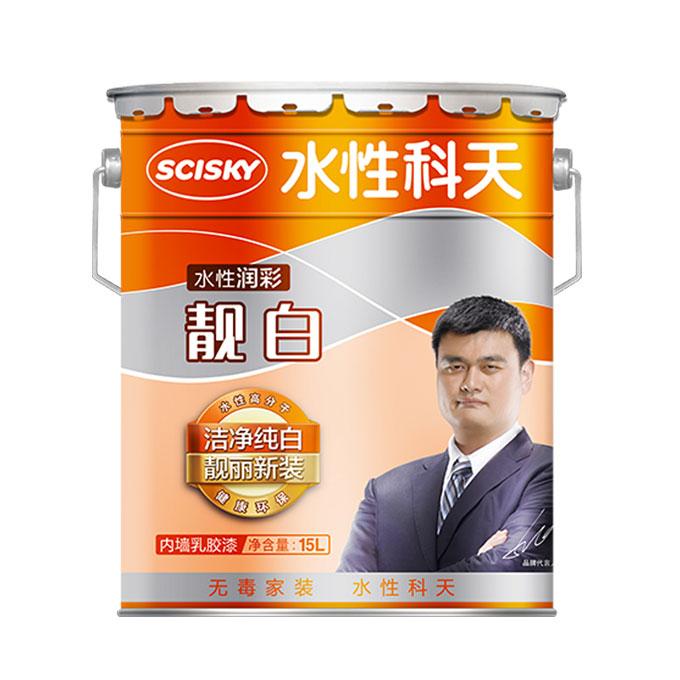 雷竞技app下载官方版润彩靓白内墙乳胶漆