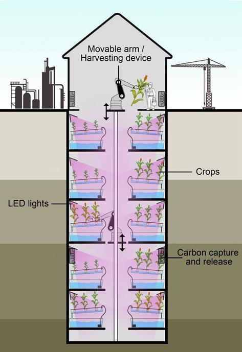 变废为宝!LED照明系统助废矿井变成垂直农场