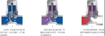 进口双金属温调式蒸汽疏水阀