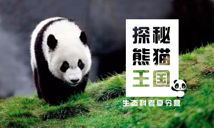 """""""探秘熊猫王国""""生态科考夏令营"""