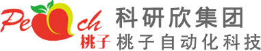 深圳市桃子自动化科技有限公司