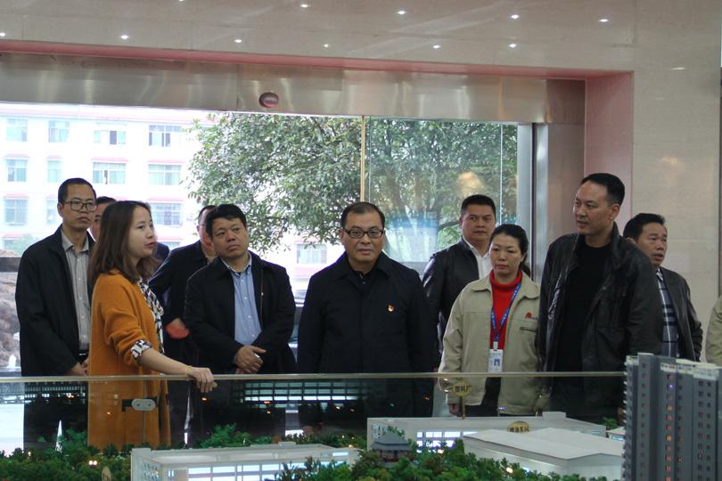 郴州市委常委、市委组织部部长江波来我司调研:加强基层党组织建设