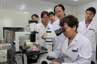 香港做无创DNA需要多少钱