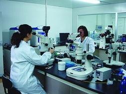 香港验血流程