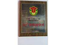 Top 10 Inbound Agencies 1994 Guangdong