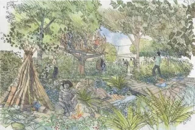 看完2019年切尔西花展花园我们学到了什么?