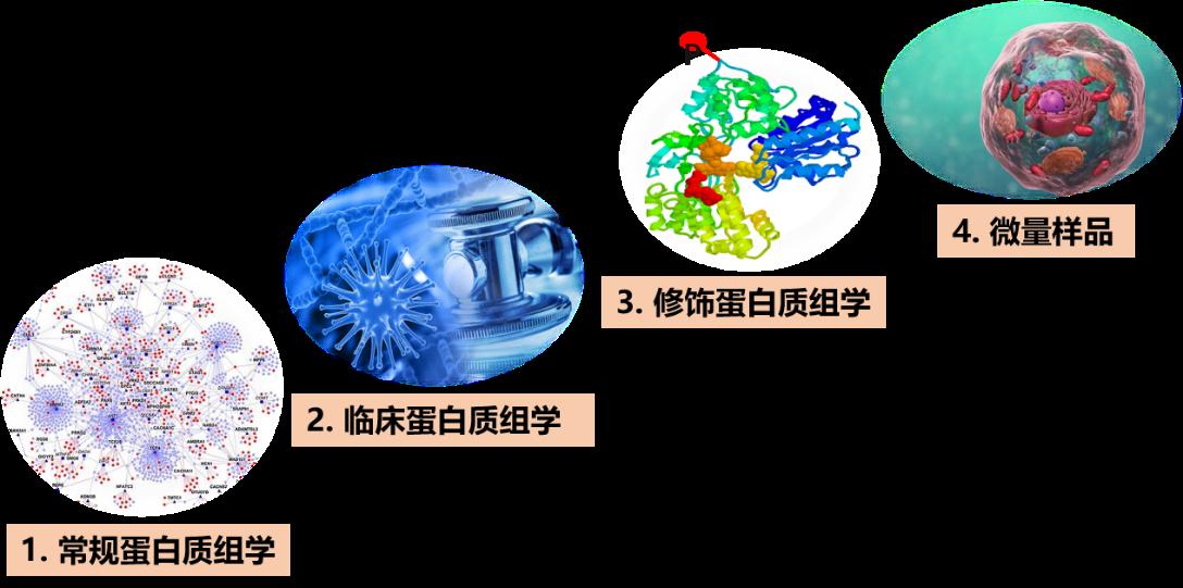 4D LFQ定量蛋白質組學分析