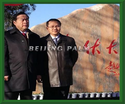 """热烈祝贺十一科技投资的中国首条光伏大道在巩义正式通车!十一科技投资的首个""""光伏树主题公园""""在巩义隆重开工!"""