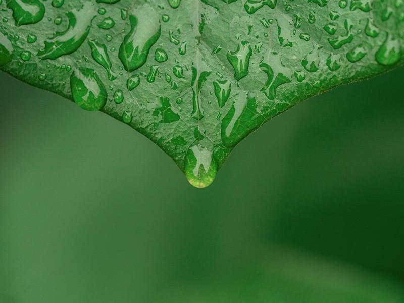 重金属土壤污染处理-淋洗修复