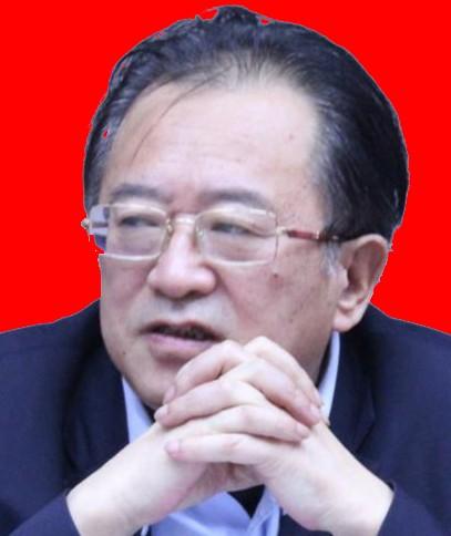 朱海兴 副会长