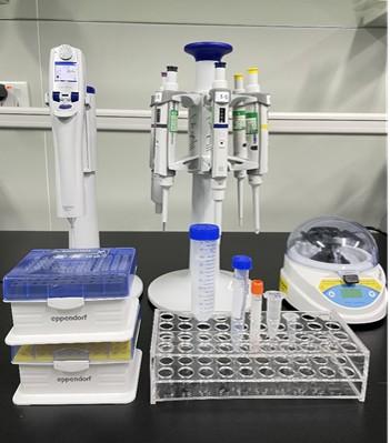 Reagent formulation