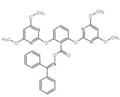 嘧啶肟草醚