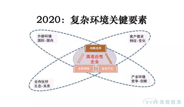 天拓推荐   董小英:跨越能力陷阱——大企业数字化转型的机制创新