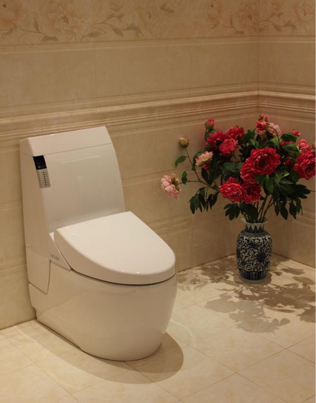 "Trend Analysis: Intelligent bathroom lift boom bathroom products ""furniture"""