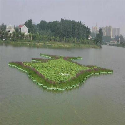 生态浮床技术及其对地表水体的原位修复综述(一)