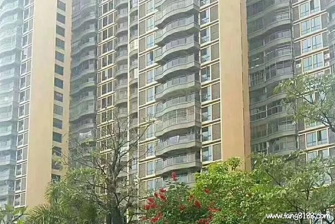 松岗大型花园小区统建楼均价13500元/㎡首付5成,分期3-5年