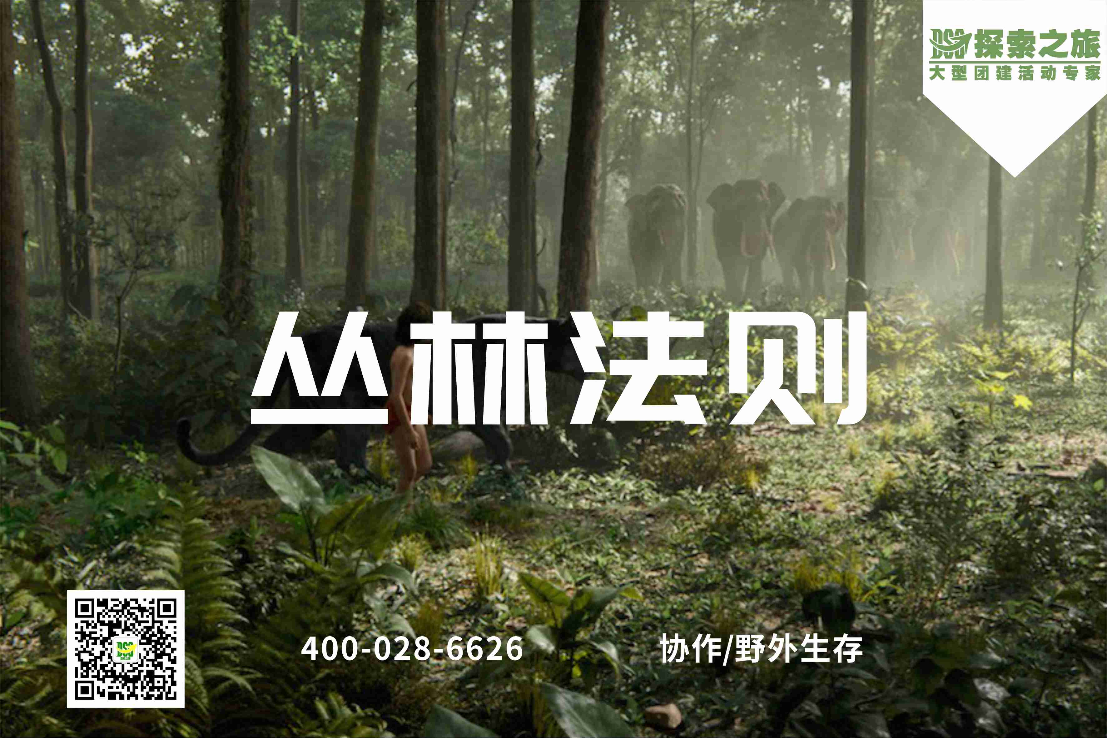 【野外生存】丛林法则