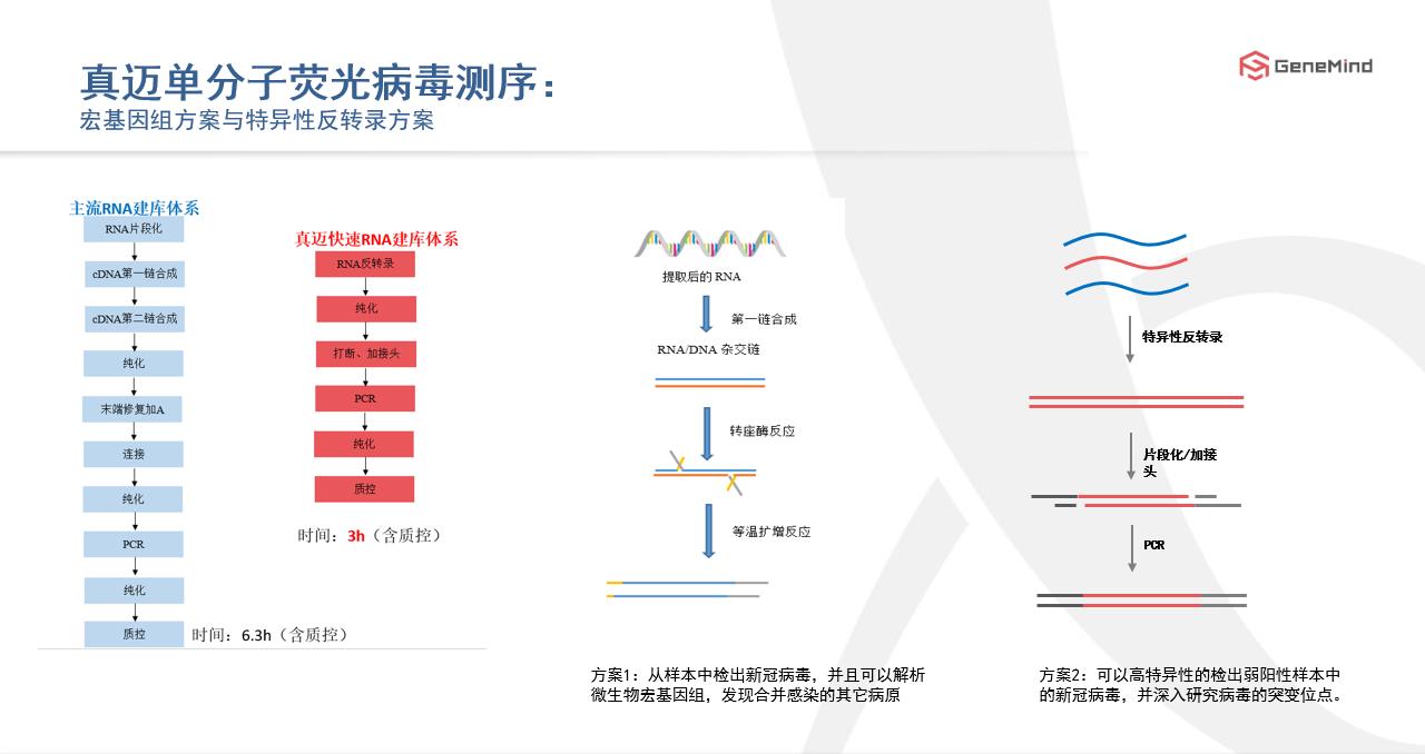 在线课程丨单分子基因测序:了解病毒,战胜病毒