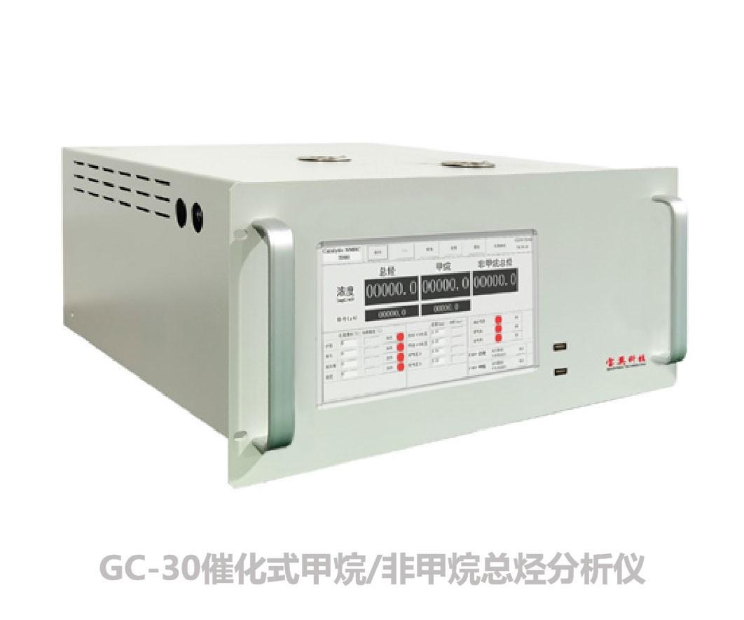 GC-30催化式甲烷/非甲烷总烃分析仪