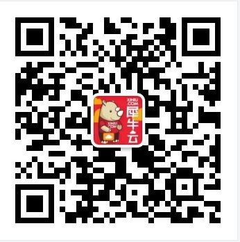 犀牛云-网站建设、SEO优化,关键词推广,口碑推广,全网营销