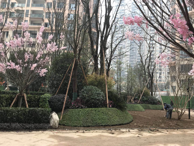 重庆两江时光