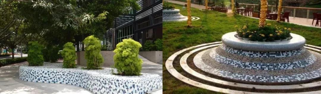 一棵树,一片池,创意树池讲故事