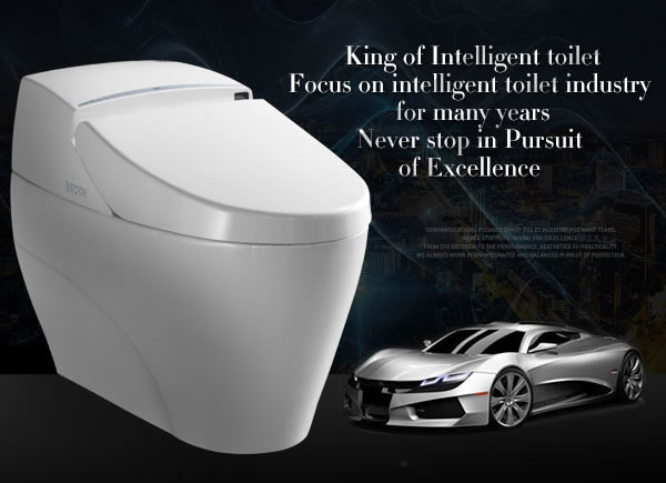 GIZO LZ-0701z Ceramic material and one piece structure electric toilet