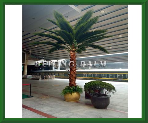我司目前圆满完成了北京西站的仿真棕榈树景观项目