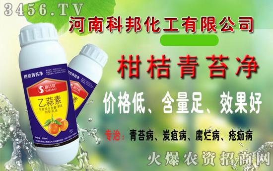 【科邦化工】:青苔净,柑桔青苔病的特效药!