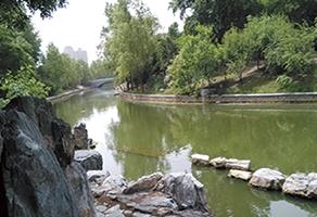 北京朝阳公园