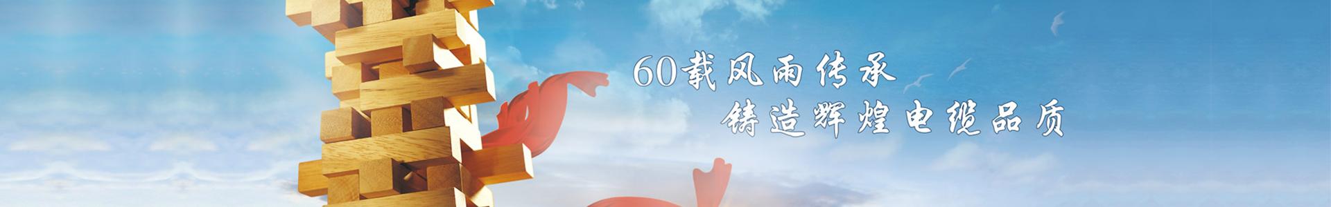 广州双菱电线厂